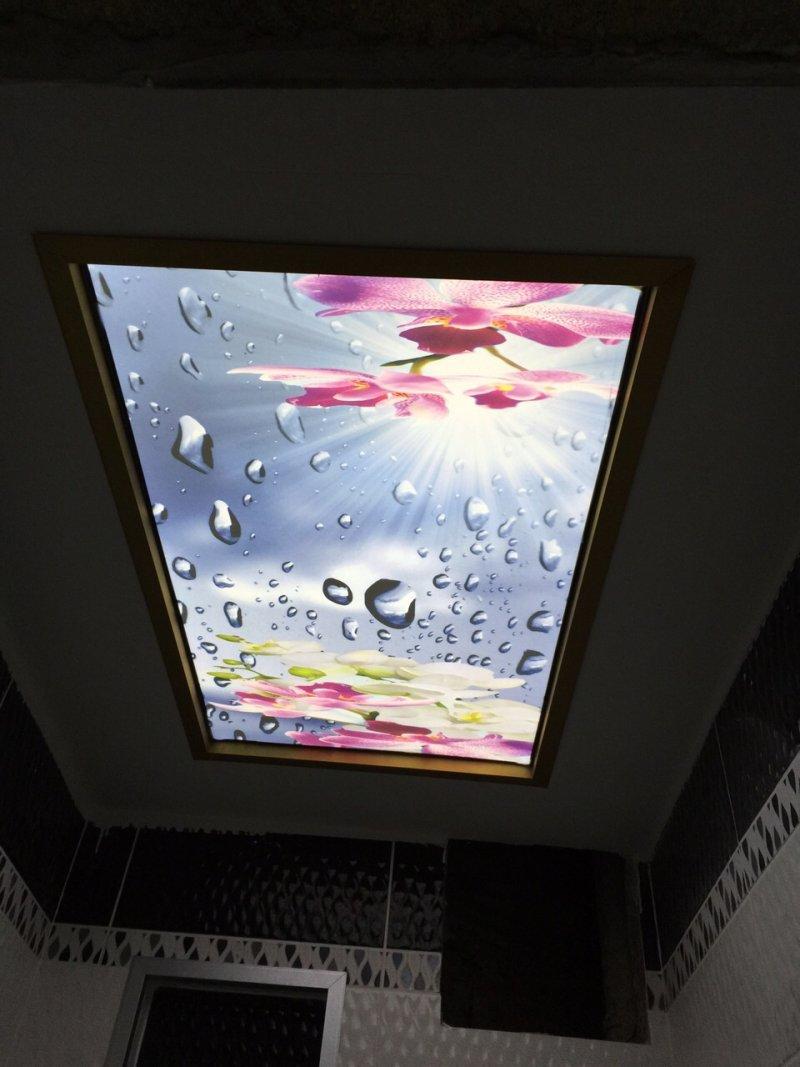 Germe tavan çeşitleri
